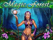 Игровой автомат Magic Forest в Вулкане