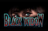 Черная Вдова на линиях автомата Вулкан