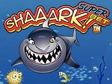 Shaaark Superbet – находка для азартного слотхантера